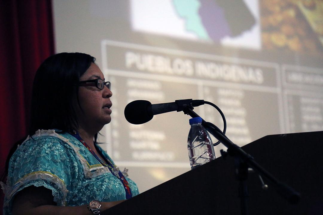Yaritza Aray_Seminario de Políticas Públicas Mineras_49